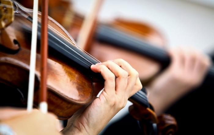 Muziekreizen