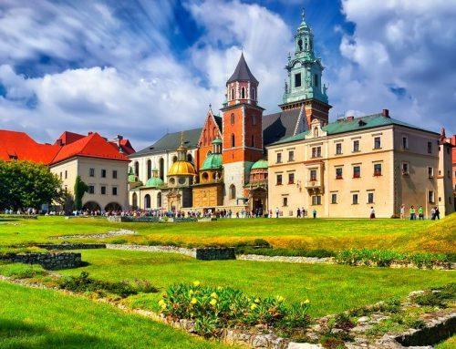 Schoolreis – studiereis Krakau en Auschwitz