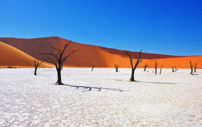 Nederlandstalige groepsreizen Nambië