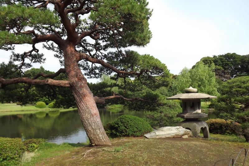 Rondreis Japan – Land van de torii en onsen - Tokyo Japanse tuin