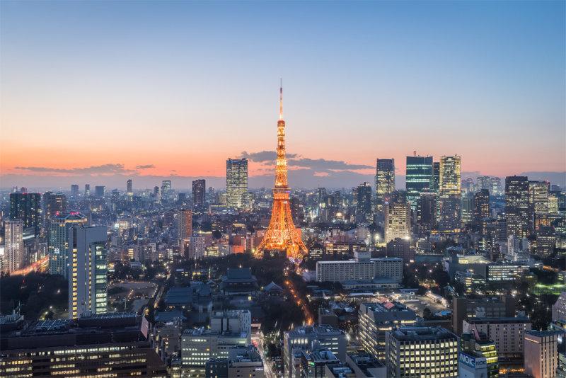 Rondreis Japan – Land van de torii en onsen - Tokyo stad met zicht op de Tokyo Tower