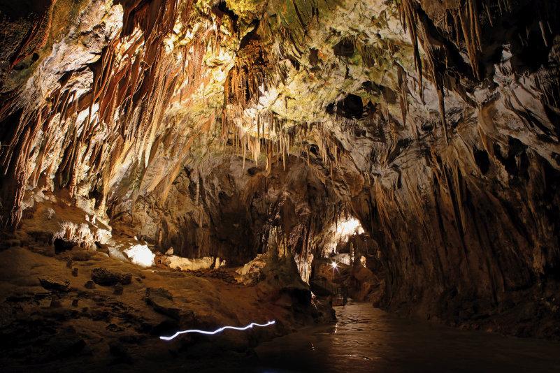 Slovenië, een rondje in de groene parel - Grotten van Postojna