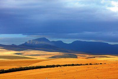 Tanzania - natuur op zijn best