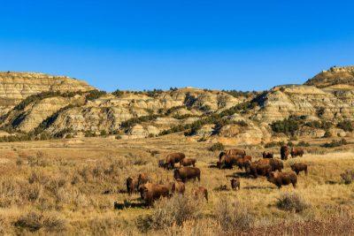Deze 10 prachtige nationale parken in de VS kende u misschien nog niet - Theodore Roosevelt National Park