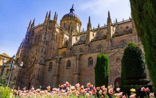 Riviercruise op de Douro - Cathedral Nueva - Salamanca - Spanje