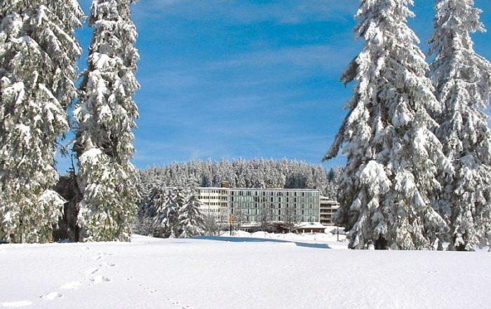 Op wintervakantie met de familie in Feldberg - Residenz am Feldberg - Zwarte Woud - Duitsland