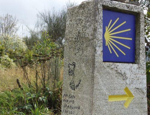 Compostela – Camino Frances – 7 tot 19 september 2019