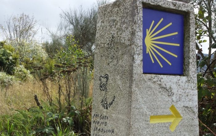 Compostela – Camino Frances – 3 tot 15 september 2019