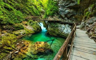 Slovenië - Gorge van Vintgar