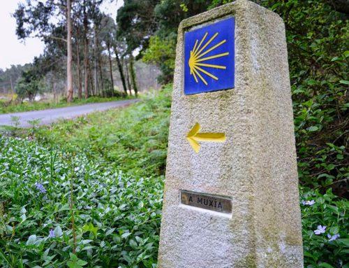 Compostela – Camino Finisterre – 5 tot 13 juni 2020