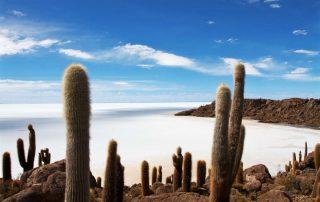 Rondreis Bolivië – Land van uitersten - Salar de Uyuni