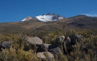 Rondreis Bolivië – Land van uitersten - vulkaan Tunupa