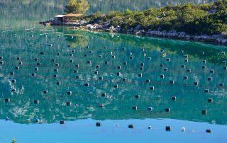 Rondreis Kroatië - Ston - oesterkwekerij