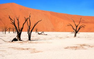 Rondreis Namibië - Sossusvlei