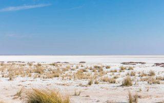 Rondreis Namibië - Zoutpan in Etosha National Park
