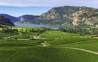 Rondreis West-Canada langs 6 nationale parken - Wijngaarden Okanagan Valley - Kelowna