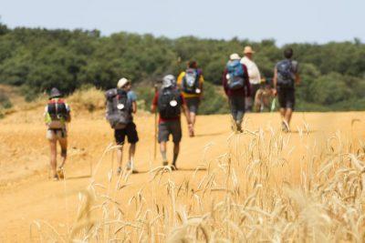 13-daagse staptocht van Astorga naar Santiago de Compostela – Spanje