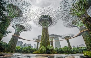 Rondreis Maleisië - Gardens by the Bay en Marina Bay Sands