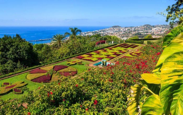 Tuinreis 2019 - Madeira