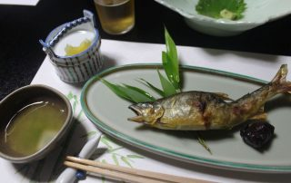 Japan, de favoriete bestemming van collega Tom - vis