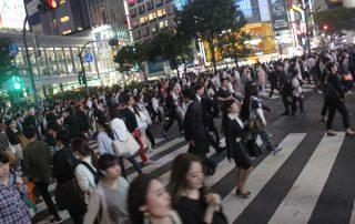 Japan, favoriete bestemming van onze collega Tom - Tokio