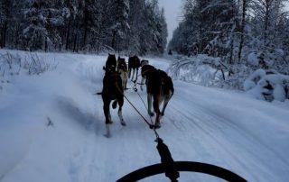 Noorwegen, tussen licht en donker - eindelloze natuur
