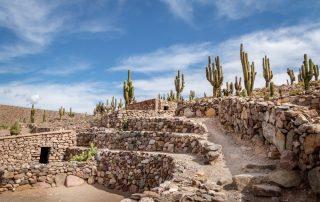 Rondreis Argentinië en Patagonië met Chileense afsluiter - ruines van Pucara de Tilcara