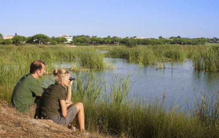 Vogelspotten in de Algarve - Vogelspotten