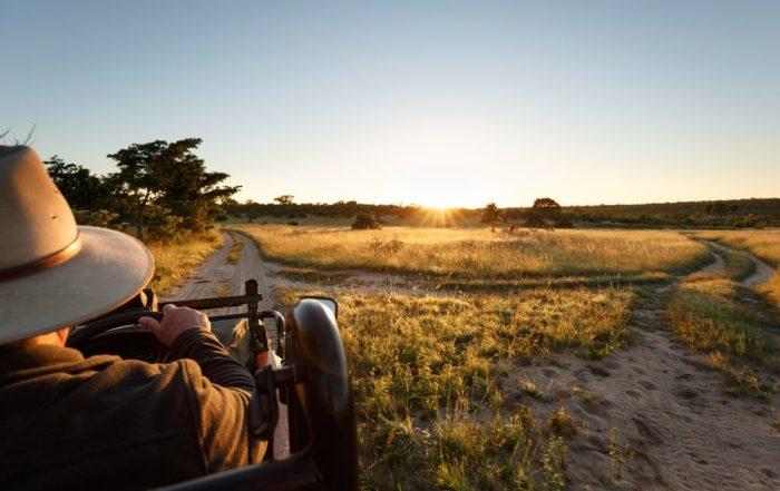 Rondreis Zuid-Afrika – Van wijnlanden tot savanne - Sabi Sands Game Reserve