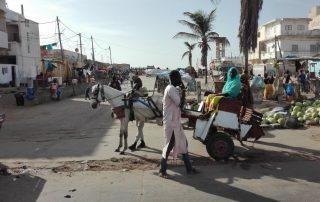 Senegal de favoriete bestemming van collega Anne - Lokale markt