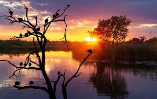 Botswana - zonsondergang - Travel Sensation
