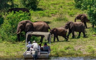 Rondreis Botswana - Chobe National Park - safari per boot