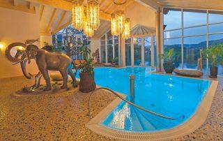 Hotel Weisser & River Bär - zwembad