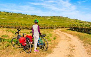 fietsen in de Elzas
