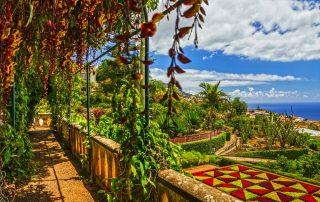 Rondreis Madeira - Botanische Tuin Monte - Funchal