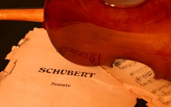 Met Waldo Geuns naar de Bregenzer Festspiele en de Schubertiade in Schwarzenberg