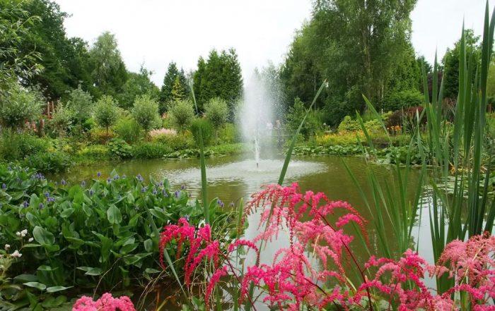 Tuinreizen 2020 - Friesland & Texel (Oevertuin De Blesse)