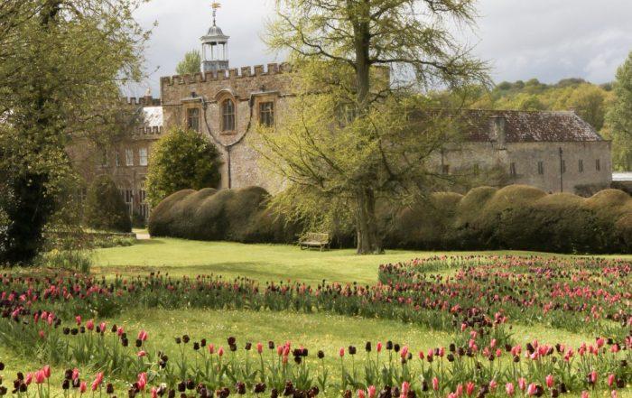 Tuinreizen 2020 - Somerset en Dorset - 4 dagen met Paul Janssen