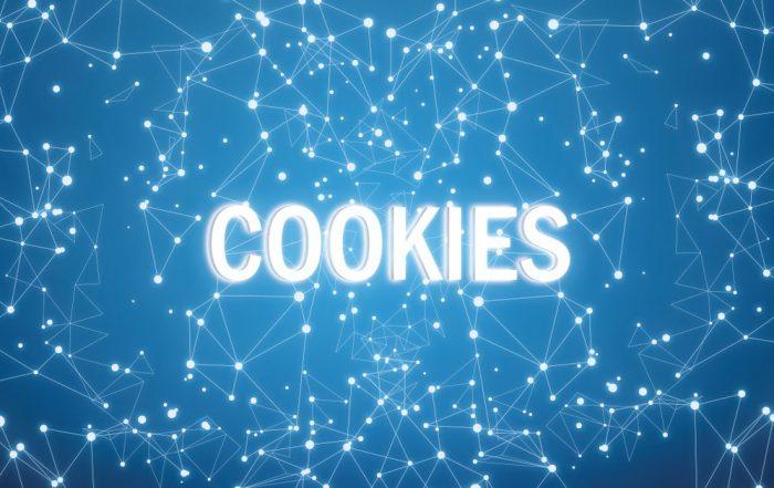 Déclaration en matière de cookies Omnia sa