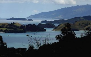 Nieuw-Zeeland - Coromandel
