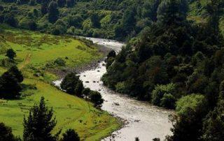 Nieuw-Zeeland - landschap