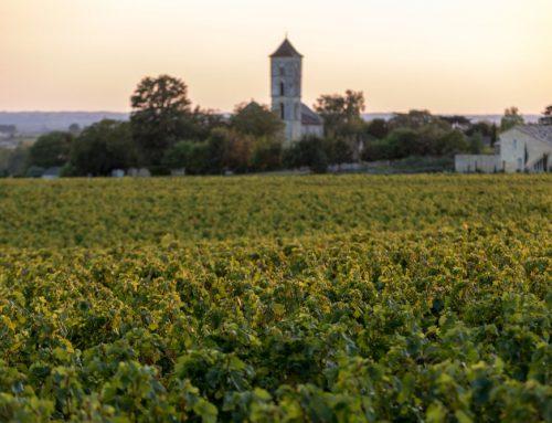 Rondreis Zuid-Frankrijk – La douce France
