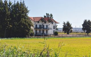 Rondreis Zuid-Portugal - rijstvelden - Alcacer do Sal