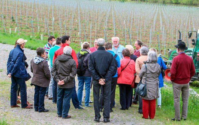 Met Gido Van Imschoot naar de Waalse en Luxemburgse wijnbouwers